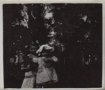 Vieilles plaques de famille 1900